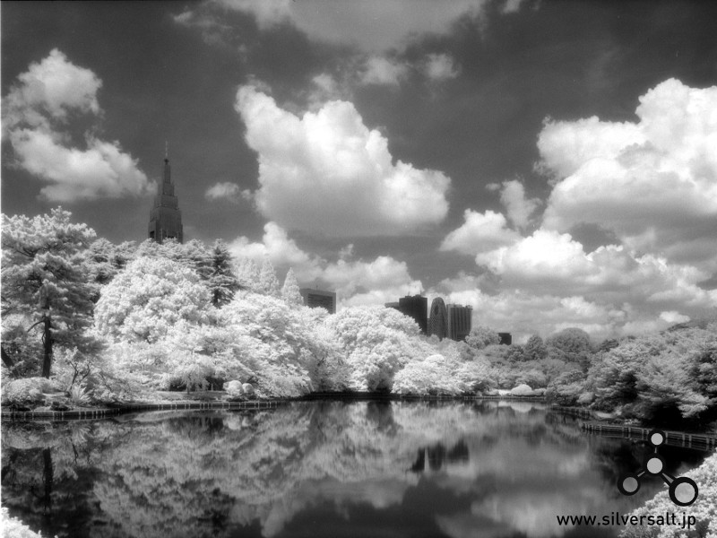 Rollei Infrared 400S
